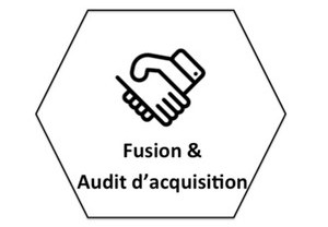 fusion-audit-acquisition